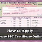 How to Apply Duplicate SSC Certificate Online